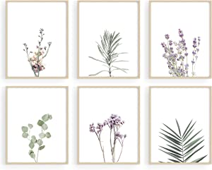 "HAUS AND HUES Floral Prints and Plant Posters Set of 6 Botanical Prints and Floral Wall Art | Plant Prints | Plant Wall Art | Flower Wall Art | Plant Botanical Prints Set (8""x10"", UNFRAMED)"
