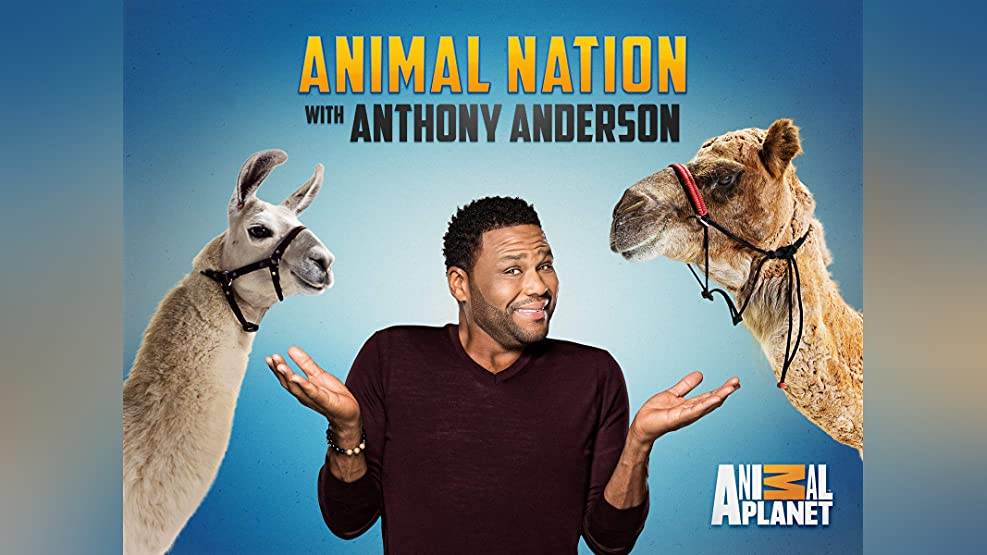 Animal Nation with Anthony Anderson - Season 1