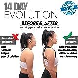 Comfort Posture Corrector for Women & Men