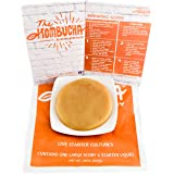 Large Kombucha Brewing SCOBY & 16oz (2 Cups) Strong LIVE Starter TEA and LIVE Cultures (Makes 1 Gallon)