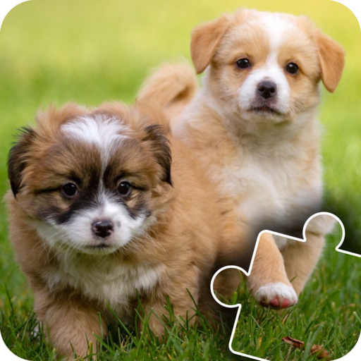 - Fun Cats & Dogs Jigsaw Puzzles for kids and toddlers 2 - Free Edition - Fun and Educational Jigsaw Puzzle Game for Kids and Preschool Toddlers, Boys and Girls 2, 3, 4, or 5 Years Old