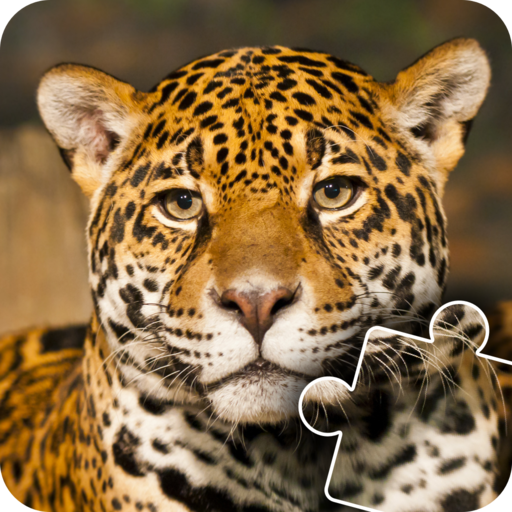 African Wild Life Animals Photo Jigsaw Puzzles - Educational and good brain practise for kids, toddlers and preschoolers]()