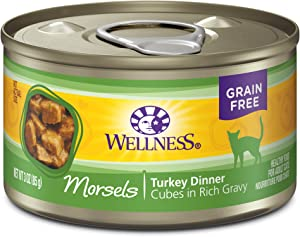 Wellness Complete Health Natural Grain Free Wet Canned Cat Food, Cubed Turkey Entree, 3-Ounce Can (Pack of 24)