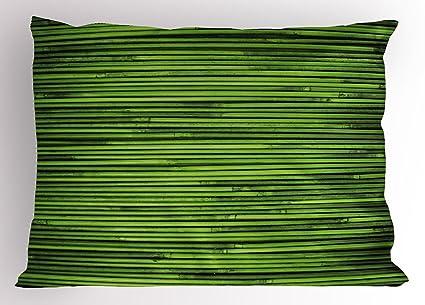 Hunter Verde Pillow Sham por lunarable, Zen bambú Tropical ramas con forro Horizontal fresco selva