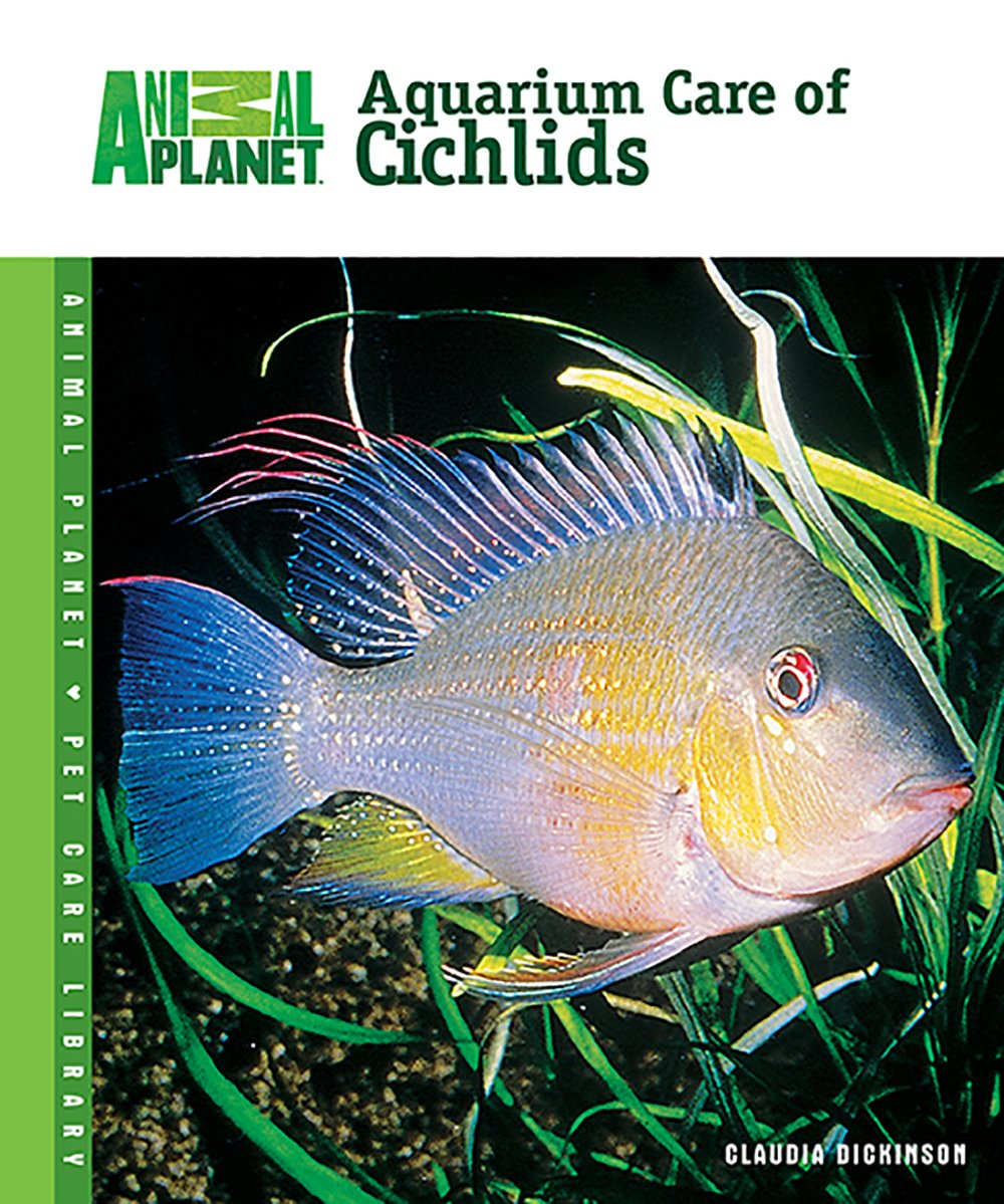Aquarium Care of Cichlids Animal Planet Pet Care Library