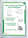 F fabsouk Eco Friendly & Chemical-free Plantable Seed Paper Notebook for Kids - Pack of 2