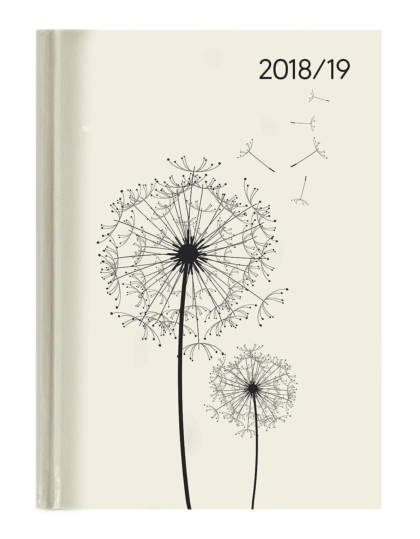 "Agenda settimanale Campustimer 2018/2019 ""Blowballs"" 15x21 cm Alpha Edition 19.0885 Kalender / Zeitplansysteme Schreibwaren (bedruckt)"