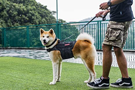 1T onetigris Molle Perros Chaleco Transpirable para Perros Harness ...
