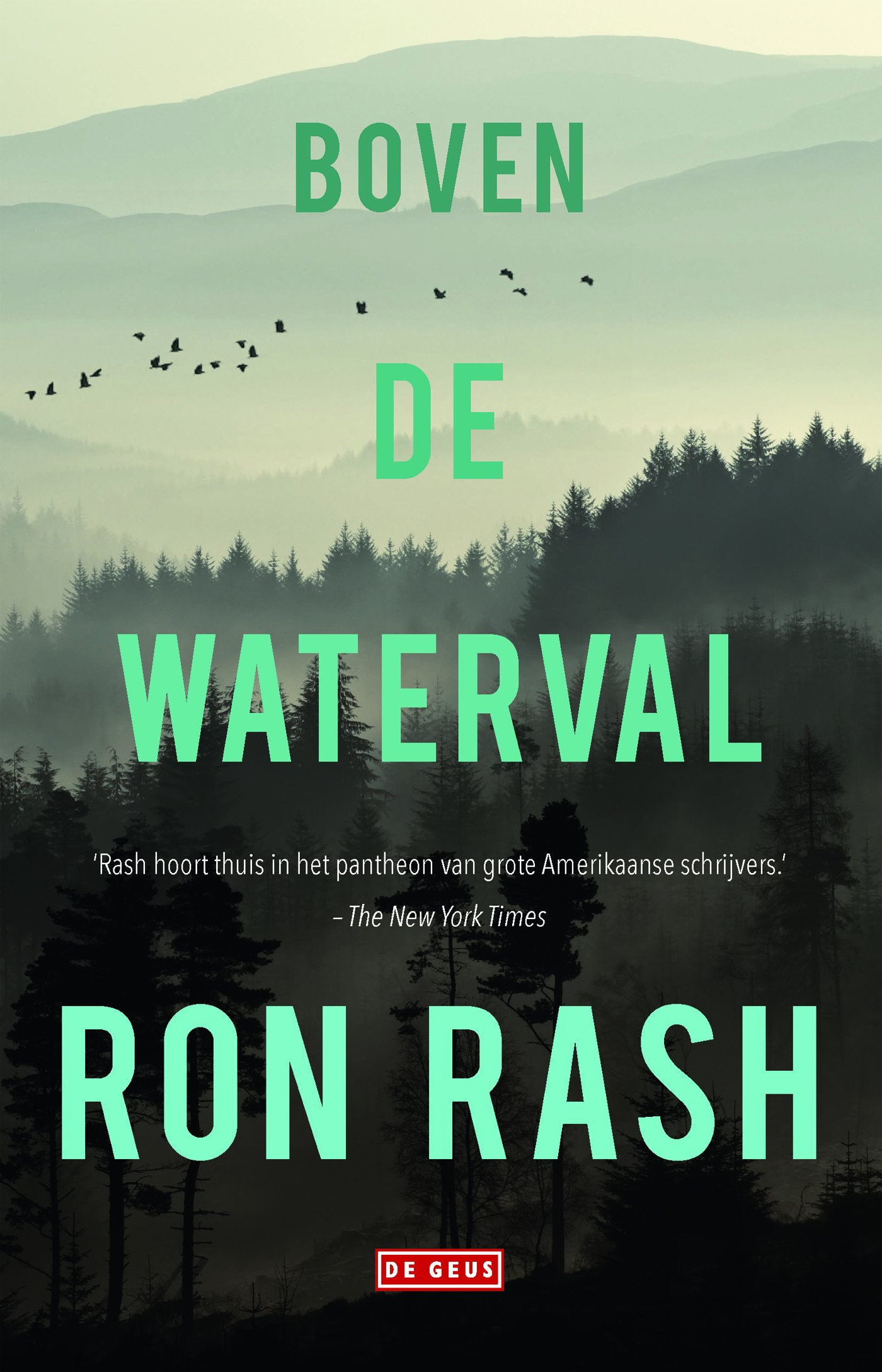 Boven de waterval: Amazon.es: Rash, Ron, Hendrickx, Nele, Bok ...