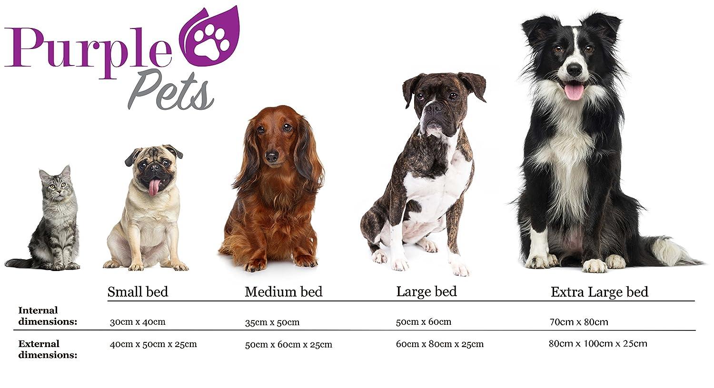 Cuscino Cuccia Divano Extra Grande, Arancia Facile da pulire Lettino per animali domestici Purple-Pets Letto per Cani e Gatti Resistente allacqua