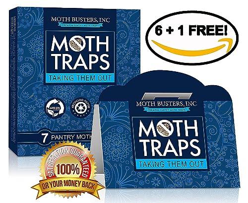 Food Moth Traps Uk