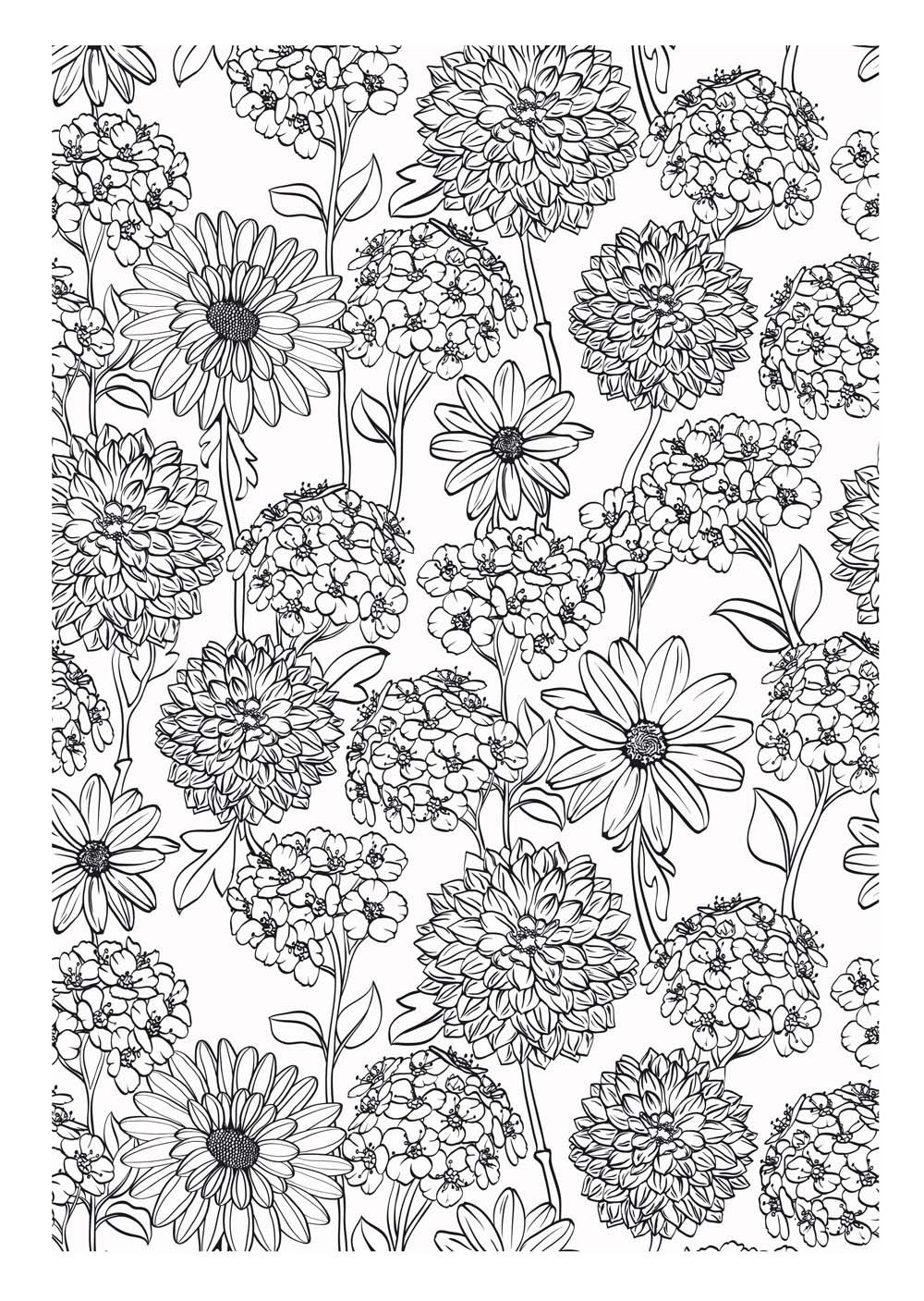 Coloriage Fleurs A Imprimer Adulte.Art Therapie 100 Coloriages Anti Stress Amazon Fr Collectif Livres
