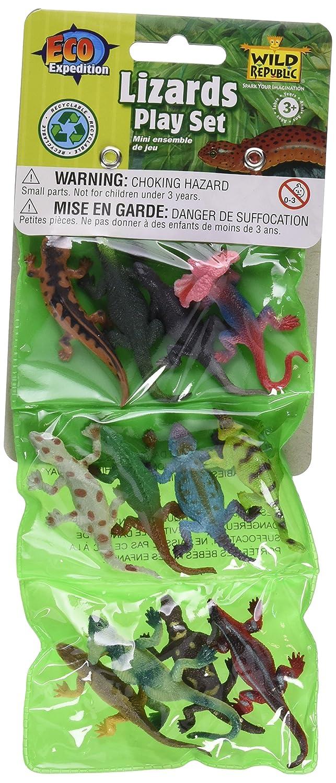 12 Piece Assorted Lizard Playset