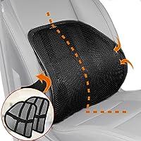 Lumbar Support, Cartop Mesh Back Cushion 2 Pack Lower Back Support, Double Mesh Lumbar Cushion Air Flow Breathable Back…