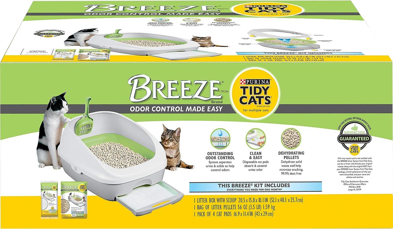 cat buries pee but not poop
