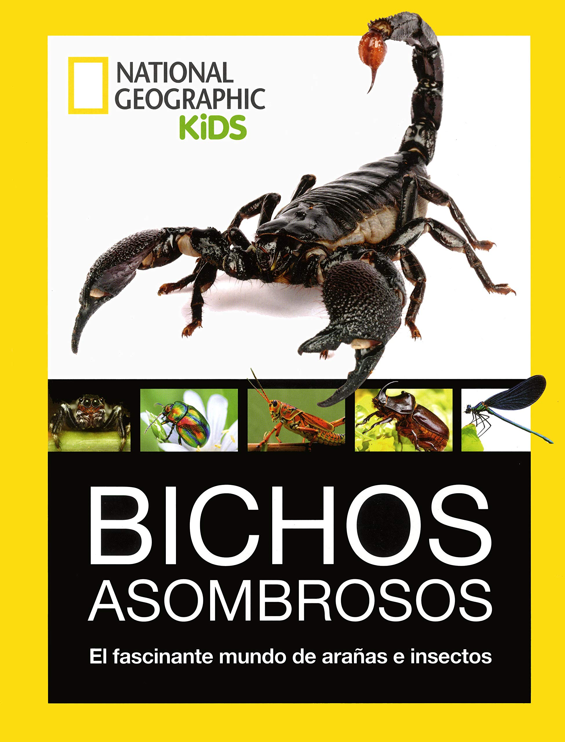 Bichos Asombrosos. El fascinante mundo de arañas e insectos. NG KIDS: Amazon.es: Vv.Aa.: Libros