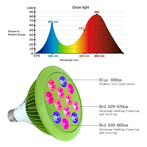 LED Plant Grow Light from Kiartten
