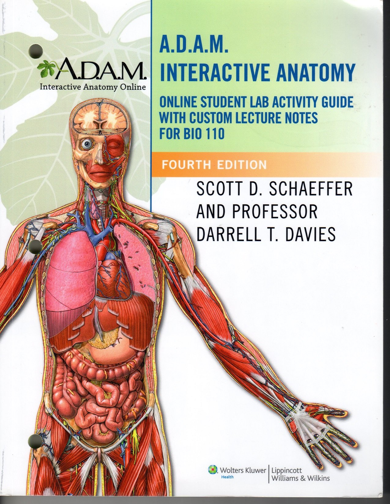 Lab Manual For Bio 110 Anatomy And Physiology Kalamazoo Valley