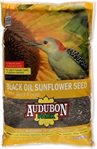 Audubon Park 12261 Black Oil Sunflower Seed Wild Bird Food, 10-Pounds
