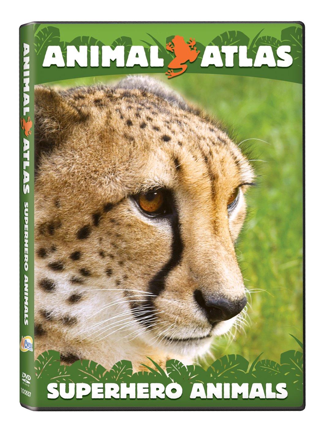 Animal Atlas: Super Hero Animals by Amazon