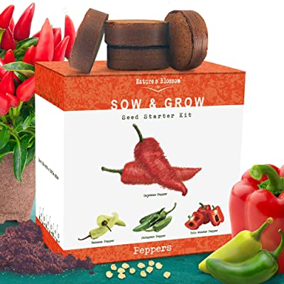 Nature's Blossom Indoor Peppers Seed Starter Kit - Grow 4 Different Peppers from Seeds: Cayenne, Hot Jalapeno, Sweet Red Bell, Yellow Chilli Peppers. : Garden & Outdoor