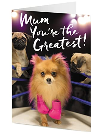 Mum Youre The Greatest Pomeranian And Pug Dogs General Mothers