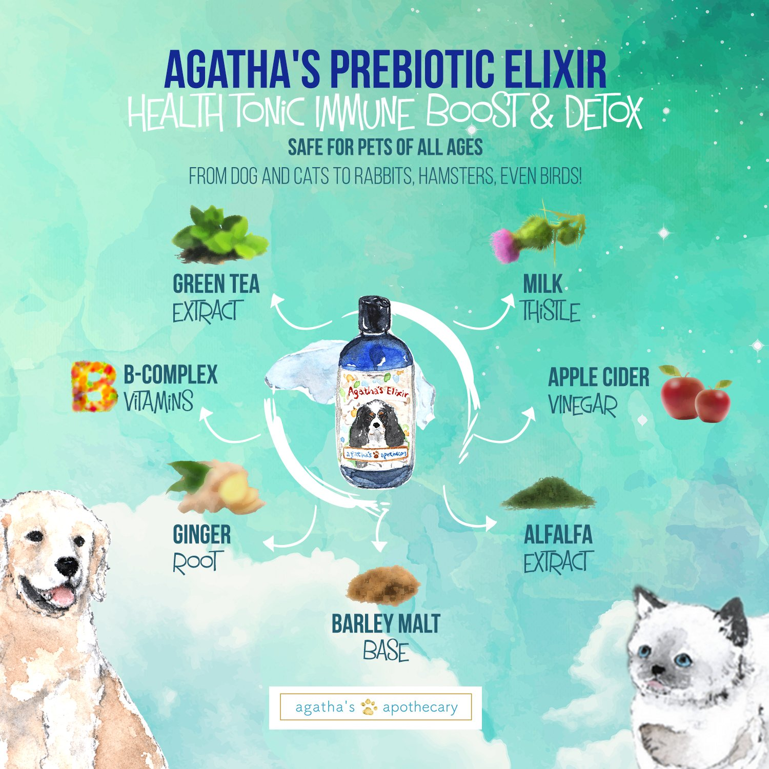 Agatha's Elixir Prebiotics for Dogs ● Appetite Stimulant for Picky Eaters and Senior Pets ● Green Tea & Milk Thistle Boost Immune System, Liver Detoxifier by Agatha's Pet Wellness (Image #8)