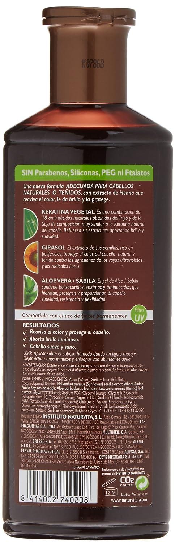 Amazon.com: Intensive Henna Shampoo for Coloured Hair ...