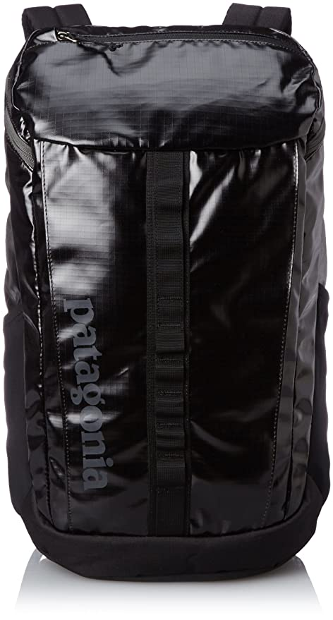 1ec1f0799d Amazon.com  patagonia (Patagonia) Black Hole Pack 25L  Sports   Outdoors