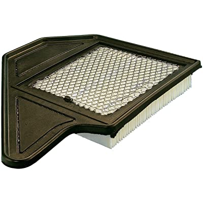 Luber-finer AF5198 Heavy Duty Air Filter: Automotive