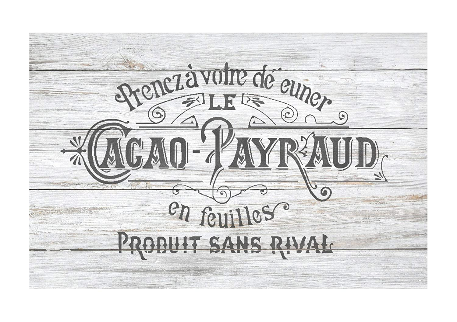 CACAO PAYRAUD Furniture Wall Floor Stencil for Painting - X Large Dizzy Duck Designs