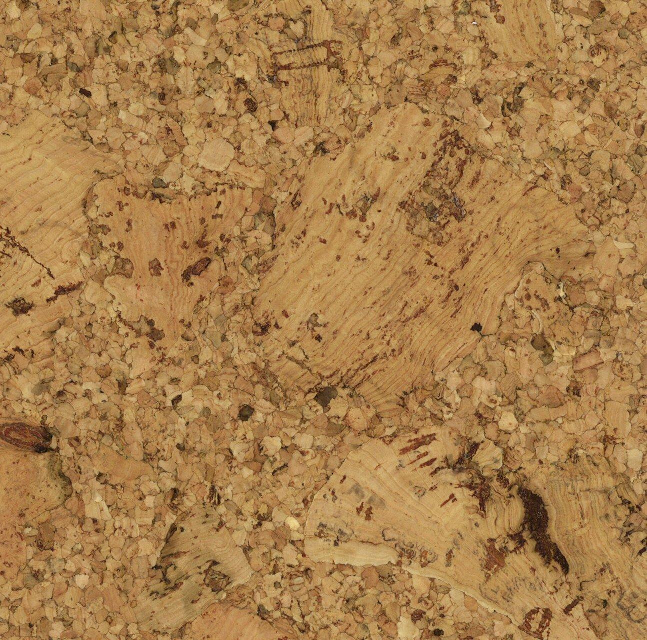 Wicanders seville xtec cork flooring sample bamboo carmel wood wicanders seville xtec cork flooring sample bamboo carmel wood floor coverings amazon dailygadgetfo Images