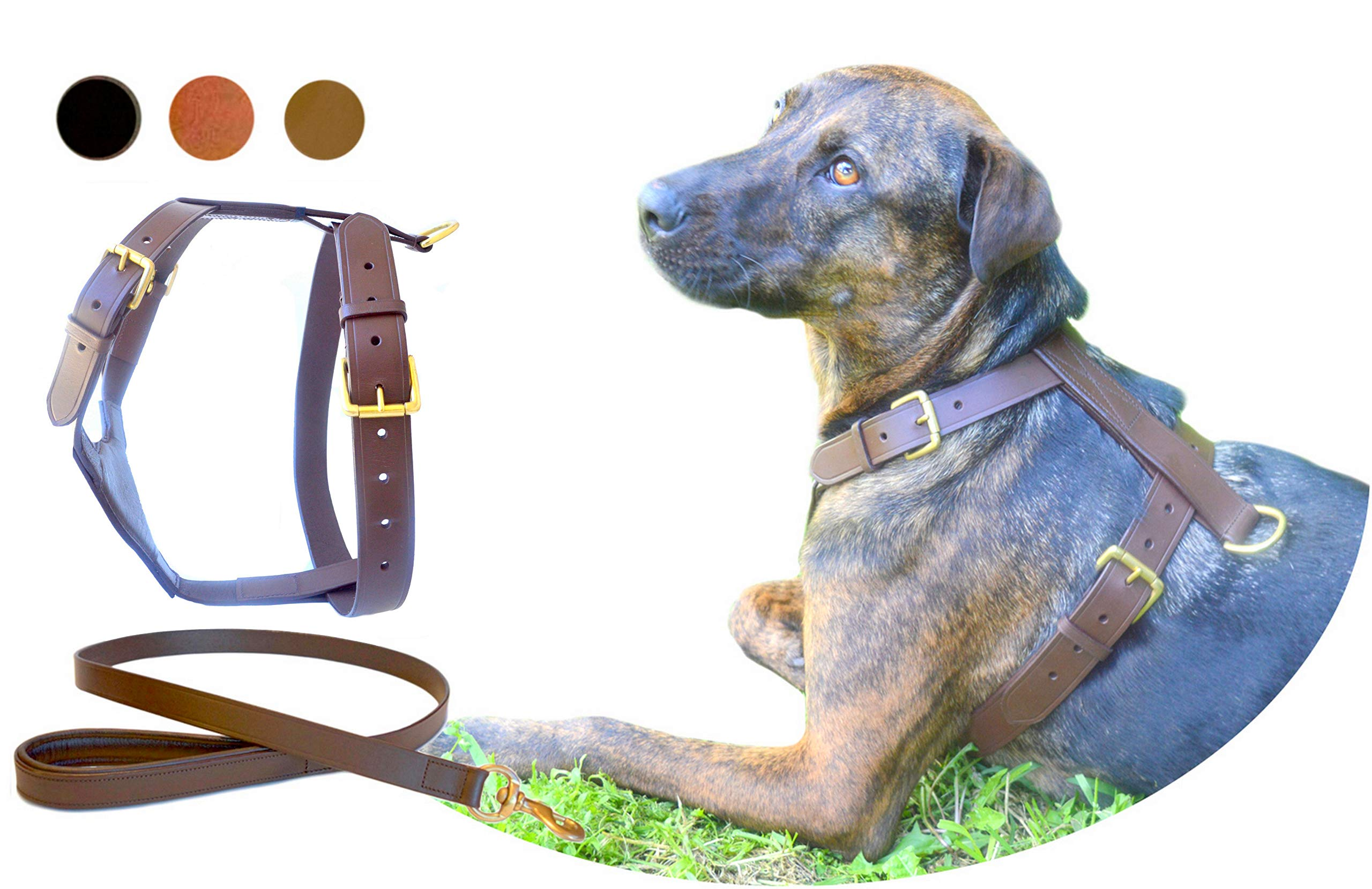 TUGBY XS/S/M/L/XL/XXL Dog Leather Harness Sets (M, Brown)