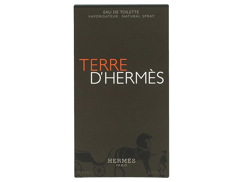 eef6ced7734 Hermes Terre D Hermes Eau De Toilette Spray for Men - 100 ml  Amazon.co.uk   Health   Personal Care