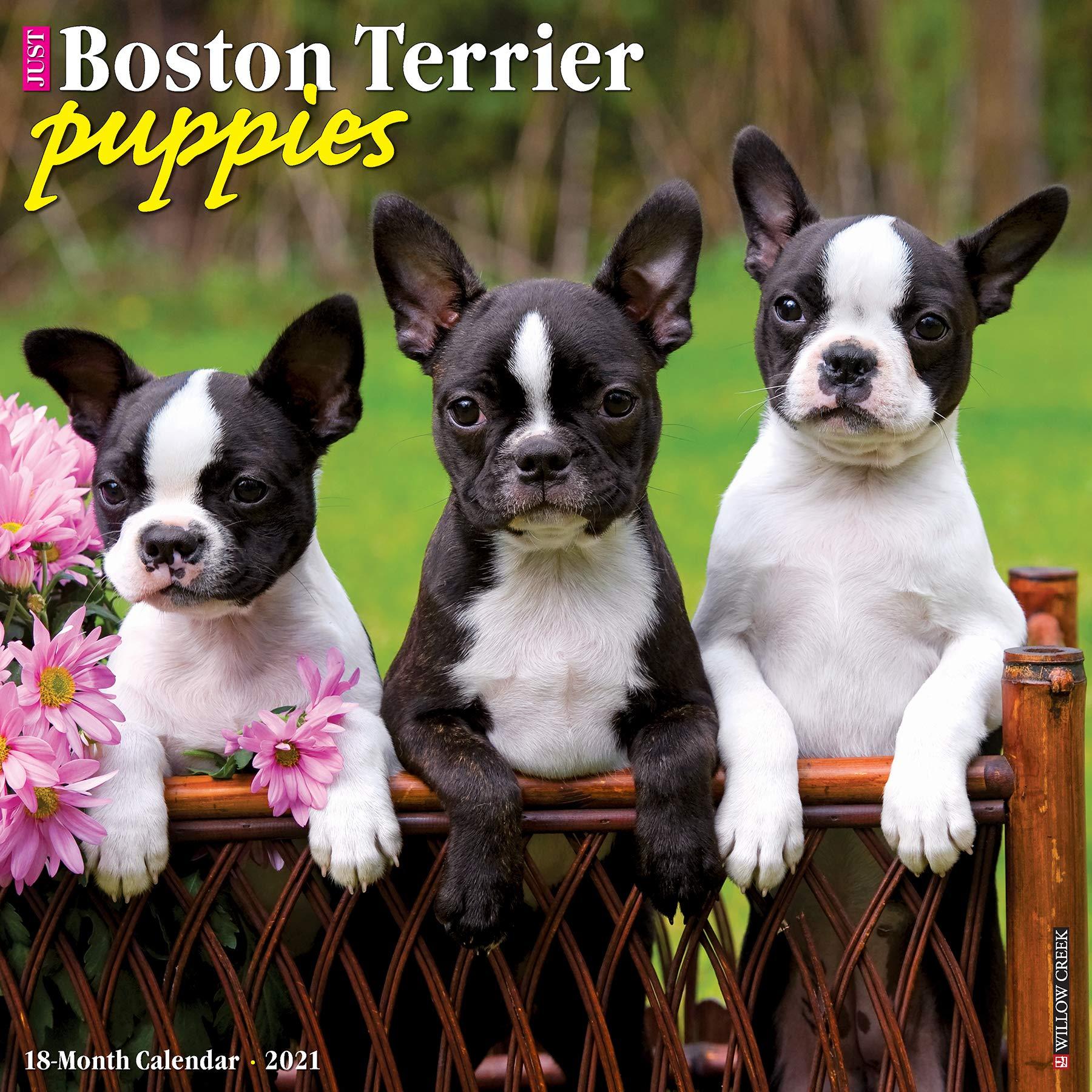 Boston Calendar July 2021