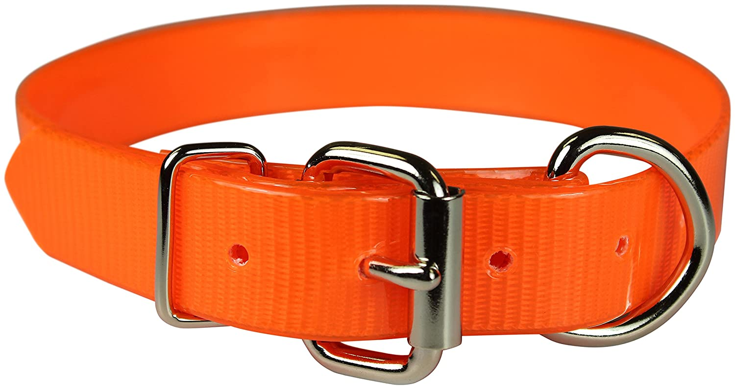orange 3 4\ orange 3 4\ OmniPet 107D-OR18 Sun Glow Dee in Front Dog Collar, 3 4  x 18 , orange