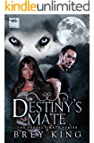 Destiny's Mate (The Perfect Mate Series Book 1): Love dreamed about, come to life
