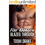 Fire Dragon Blazes Through: A MM Dragon Shifter Romance (Elements of Dragons Book 2)
