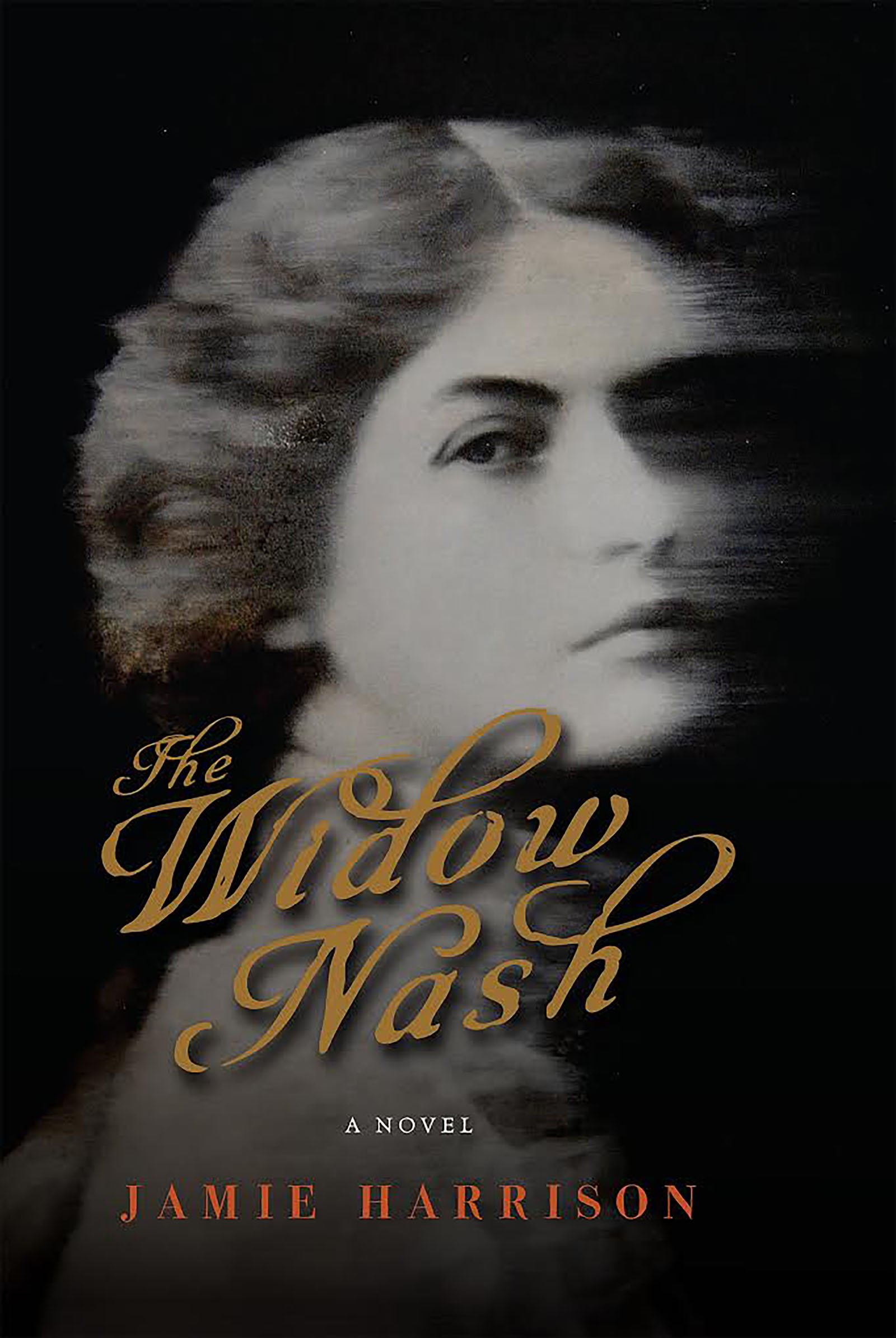 The Widow Nash A Novel Jamie Harrison 9781619029286 Amazon Books