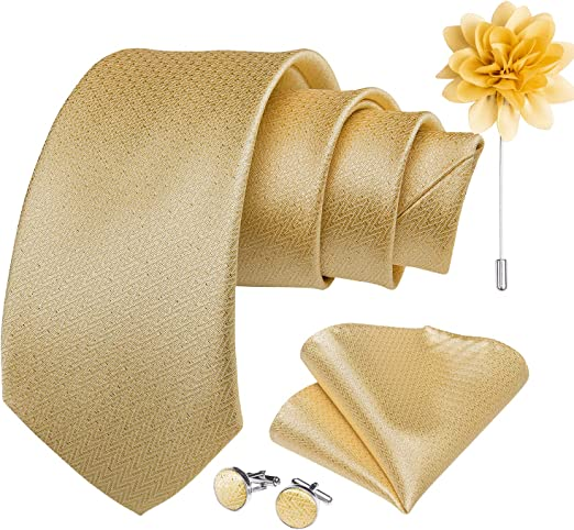 DiBanGu Silk Tie Woven Handkerchief Mens Necktie and Lapel Pin Brooch Set Paisley Plaid Solid Floral