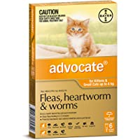 Advocate for Kittens and Small Cats up to 4kg, 6 Pack
