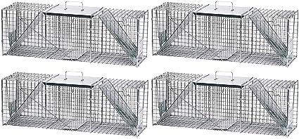 Havahart Large Live Animal Cage Trap Safe Spring Loaded Humanely Capture 1-Door