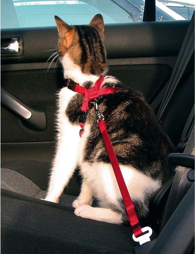 Trixie - Arnés de coche para gatos