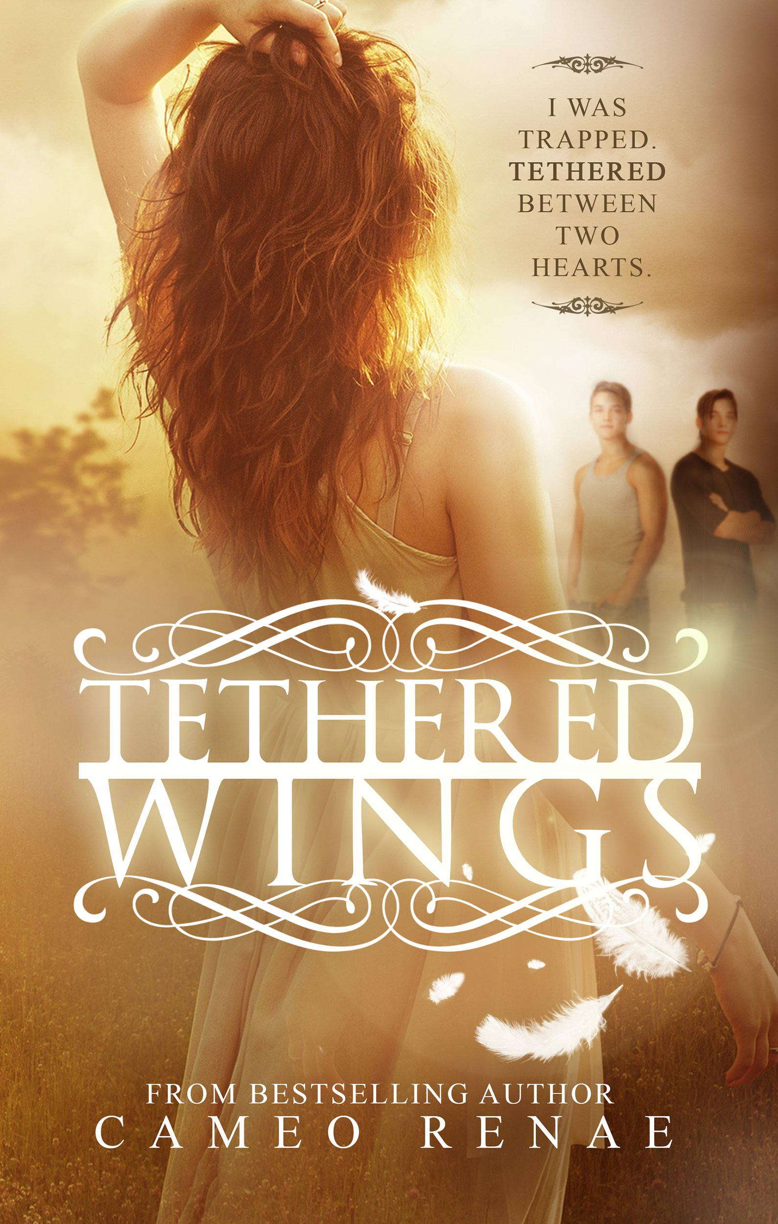 Tethered Wings (Hidden Wings Series Book Three) (English Edition)