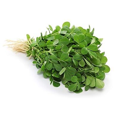 Fenugreek Herb Seeds - Non-GMO - 1 Gram, Approximately 60 Seeds : Herb Plants : Garden & Outdoor