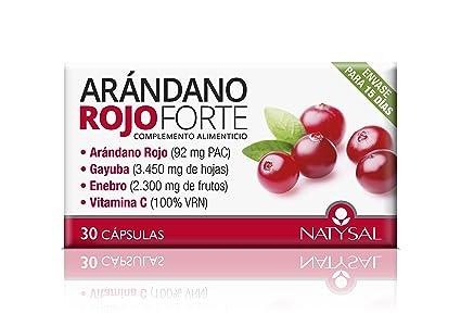 NATYSAL - ARANDANO ROJO FORTE 30cap NATYSAL