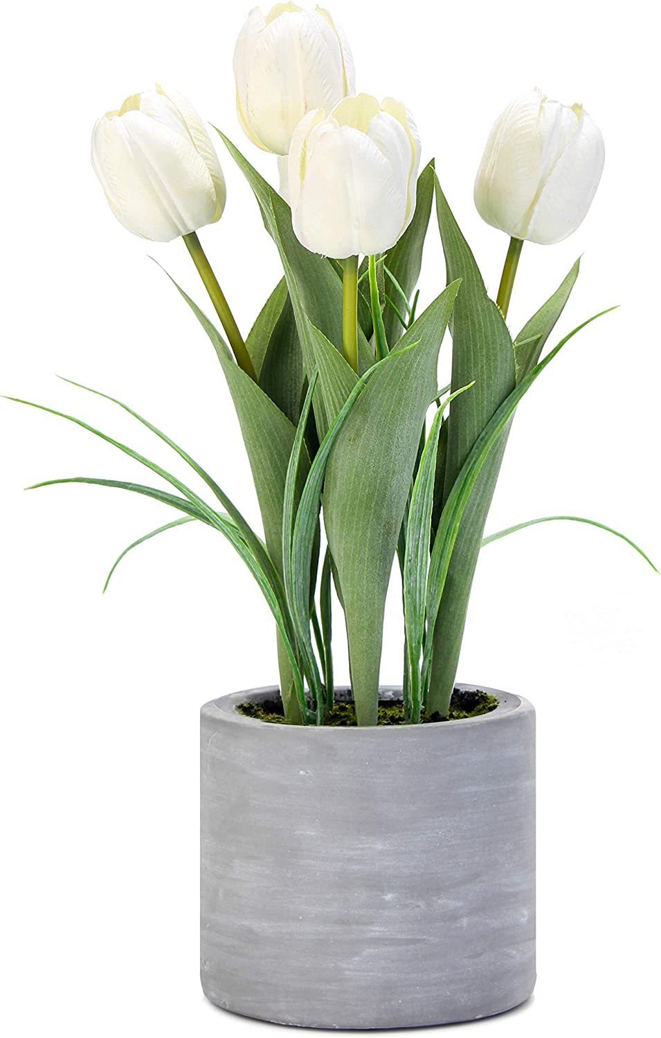 Jusdreen Artificial Potted Tulips Flowers with Cement Vase Vivid Tulip Flowers Arrangement for Home Office Décor House Decorations(5 White Tulips)