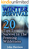 Winter Survival: 20 Tips To Survive In The Freezing Wilderness: (Prepper's Guide, Survival Guide, Alternative Medicine, Emergency)