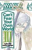 BLEACH Can't Fear Your Own World 3 (JUMP j BOOKS)