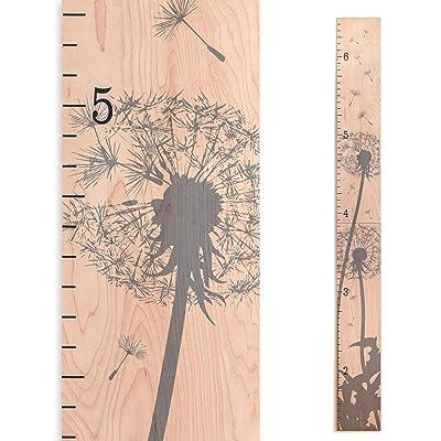 Growth Chart Art | Wooden Growth Chart Girls + Boys | Measuring Kids Height Wall Décor | Flower Growth Chart Ruler | Gray Dandelion Flower Height Chart: Baby